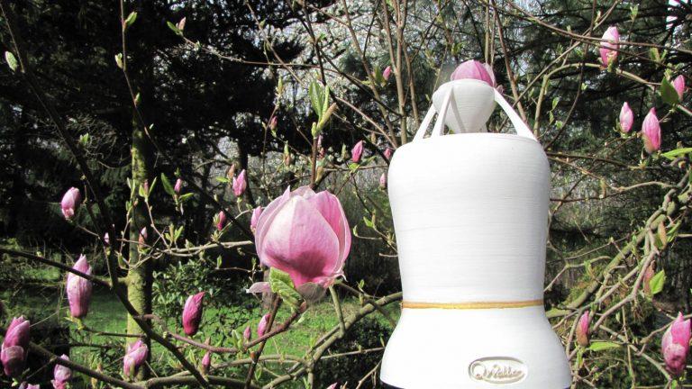 weißer OMni Lautsprecher vor Magnolien
